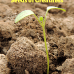 How to Nurture Your Seed of Greatness