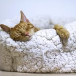3 Ways to Get Some Rest Right Now